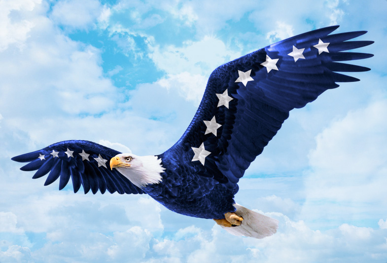 "Will Ferrell's ""Dog Fight"" Eagle Illustration"